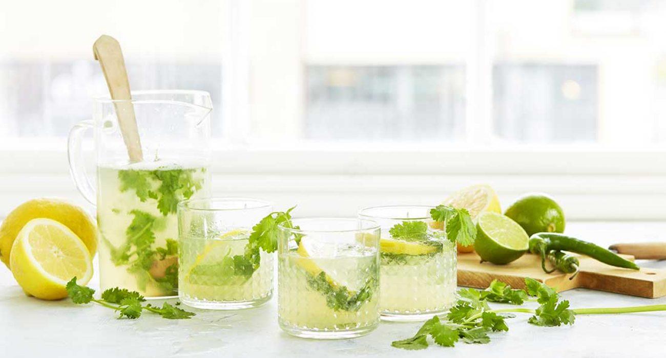 Lemonade med koriander og gronn chili